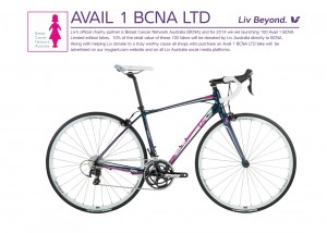 Avail-1-LTD-Flyer-picture-300x214